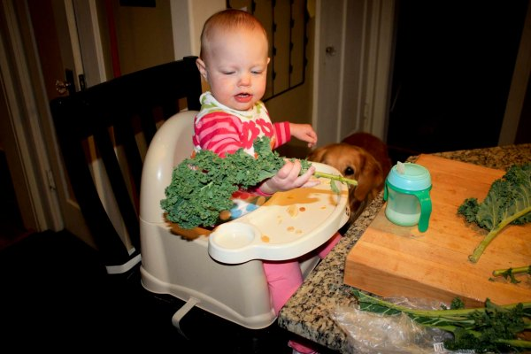 addison cooking with kale