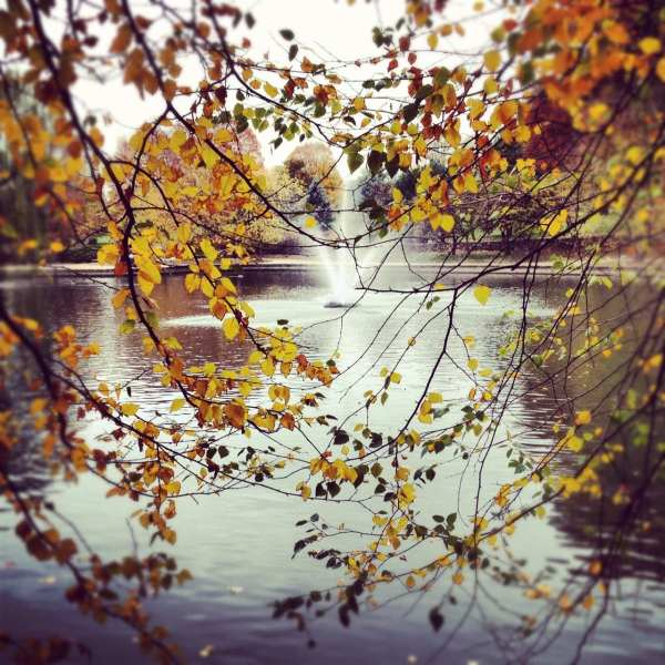 Kansas City in fall